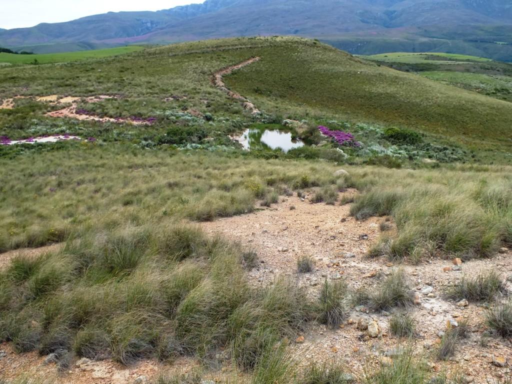 Fig. 106 Silcrete hilltops