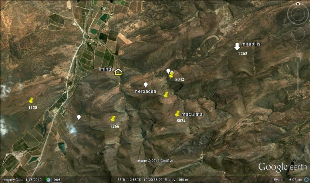 Fig. 1 Image of Iminga Mt Reserve.