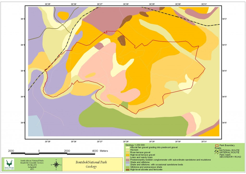 BNP_Geology